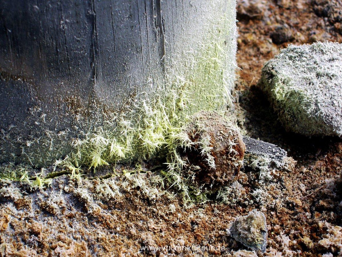 Schwefelkristalle am Zaunpfahl (Solfatara)