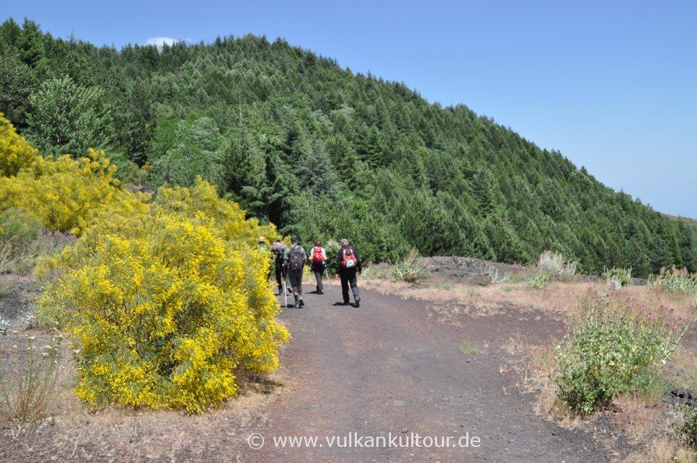 Wanderung im Naturpark Etna