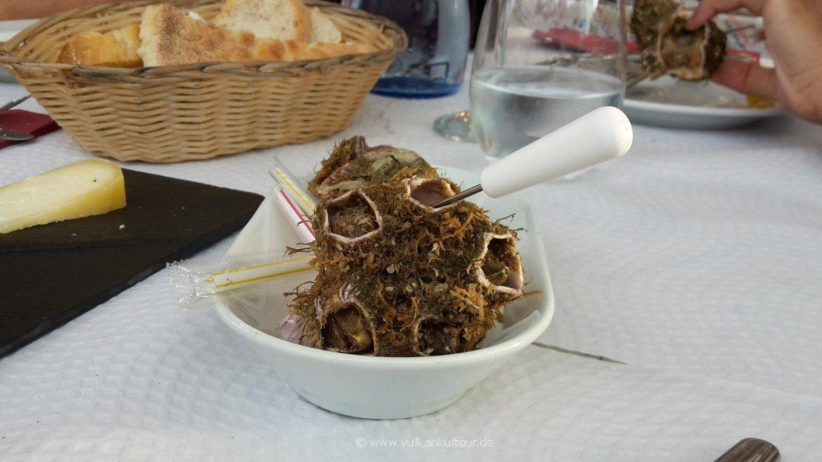 20160811 Azoren Cracas