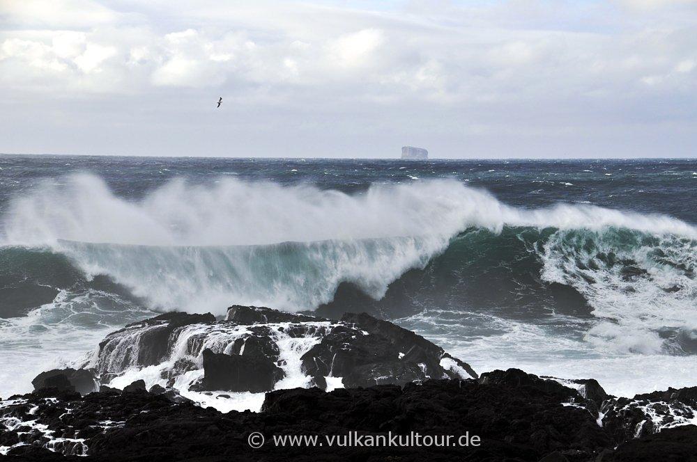 Blick auf Eldey - Islands südwestlichster Felsen und Vogelparadies (Basstölpel!)