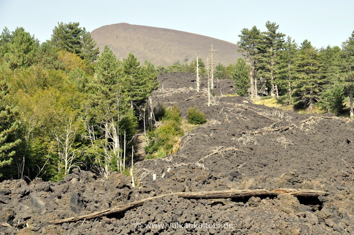 Lavastrom von 2002 und Monte Nero