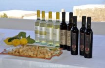 Weinprobe bei Francesco Fenech