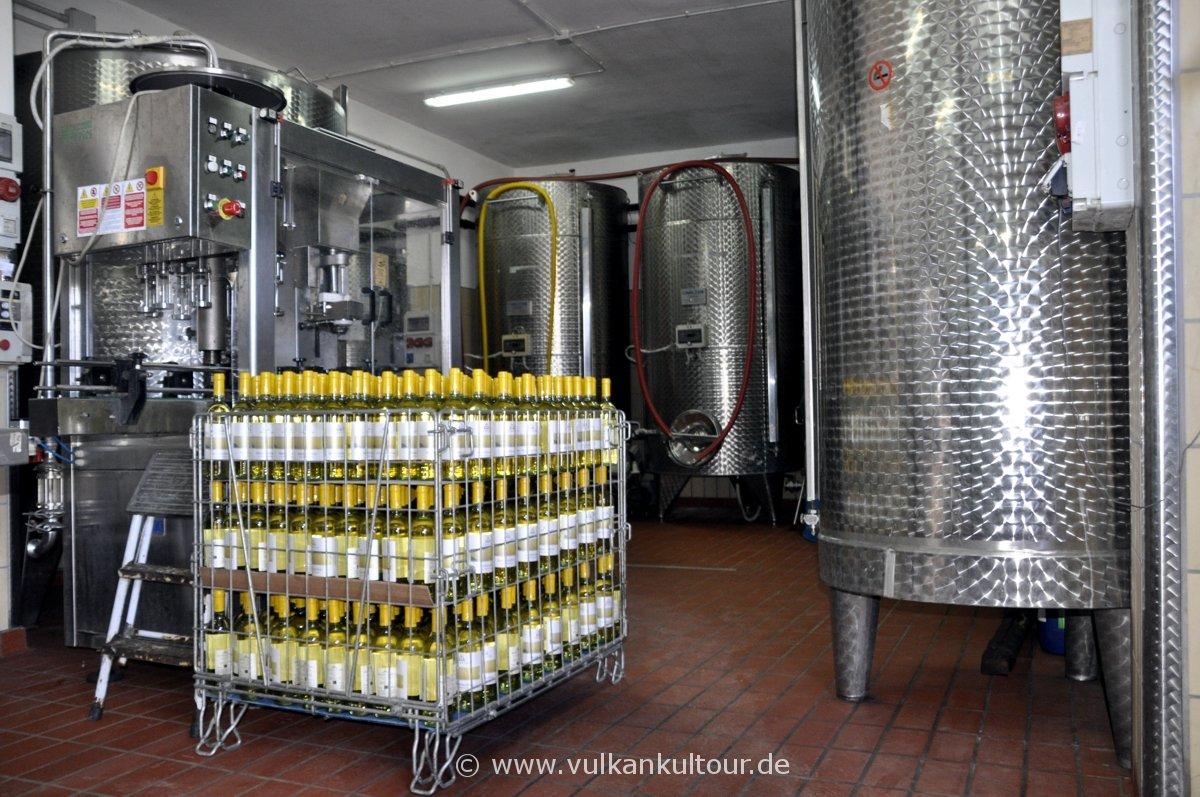 Weinkeller bei Fenech