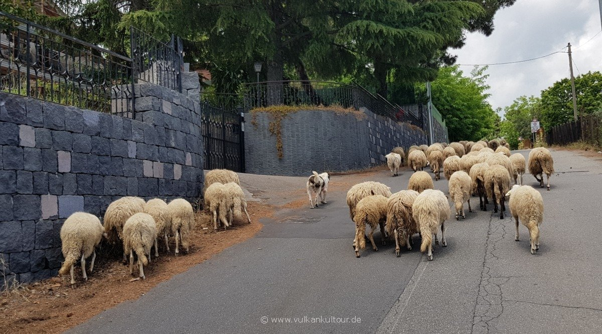 Straßensperre a la siciliana