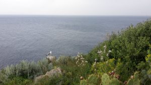 Milazzo - Blick nach Norden