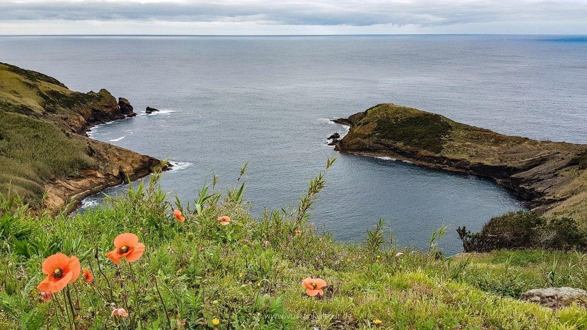 Monte Guia (Faial)