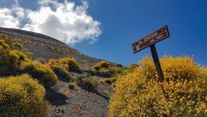 Aufstieg durch den blühenden Ginster zum Gran Cratere von Vulcano