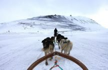 Hundeschlittentour im Adventdalen (im Hintergrund die Gruve 7)