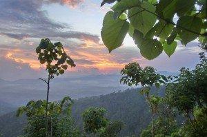 Ausblick vom Gunung Seraya