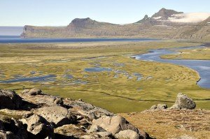 Marschlandschaft in der Hornvík-Bucht