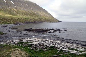 Treibholzbucht Rekavík