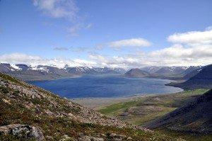 Hoch über dem Dýrafjörður