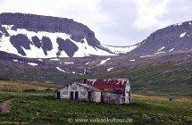 Einsamer Arnarfjöður