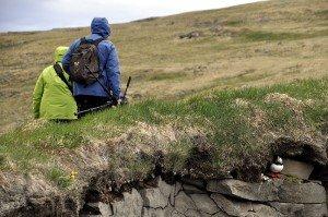 Vogelparadies Látrabjarg - 14 km lange Steilküste! Und der westlichste Punkt Islands...