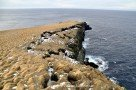 Nordkap von Grímsey - Islands nördlichster Punkt