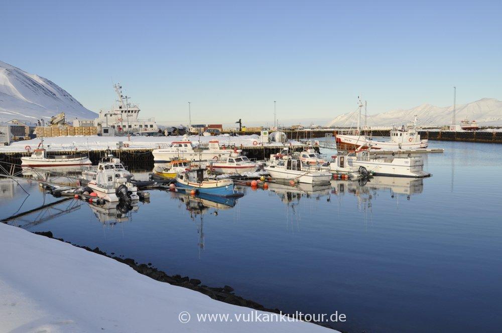Hafen von Dalvík