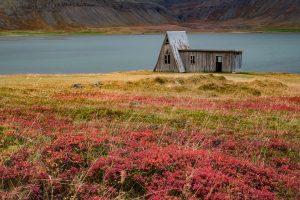 Bunter Herbst in den Westfjorden