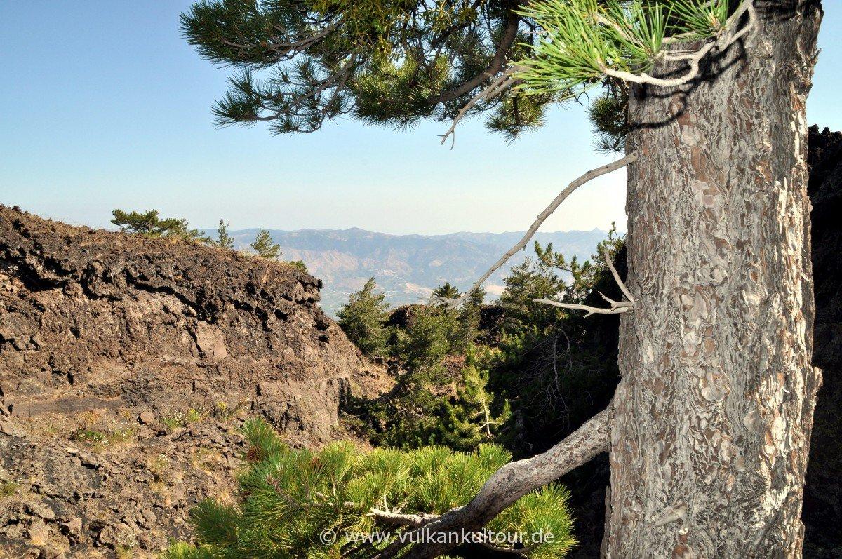 Aufstieg im Lavacanyon zum Monte Nero (Etna Nord)