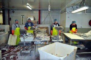 Fischfabrik von Grímsey