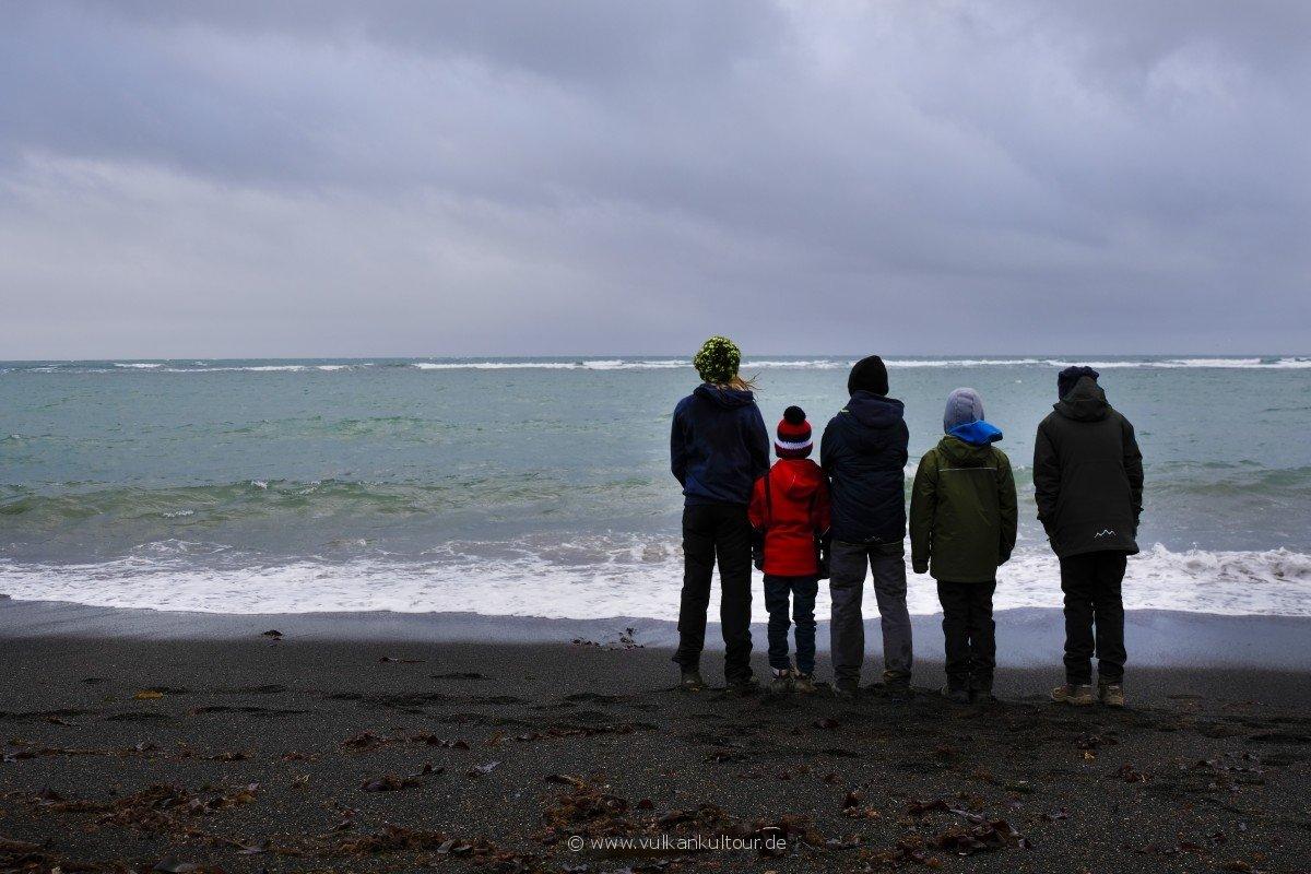 Kinder-Islandreise: wer findet den Seehund?