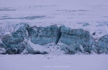 Gletscher kalben in die zugefrorenen Fjorde