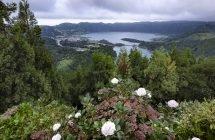 Wahrhaft königlich: Blick vom Vista do Rei in die Caldera von Sete Cidades