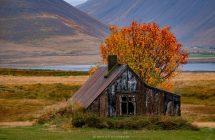 Der Herbst beginnt in den Westforden früh - und ist soooo bunt!!!