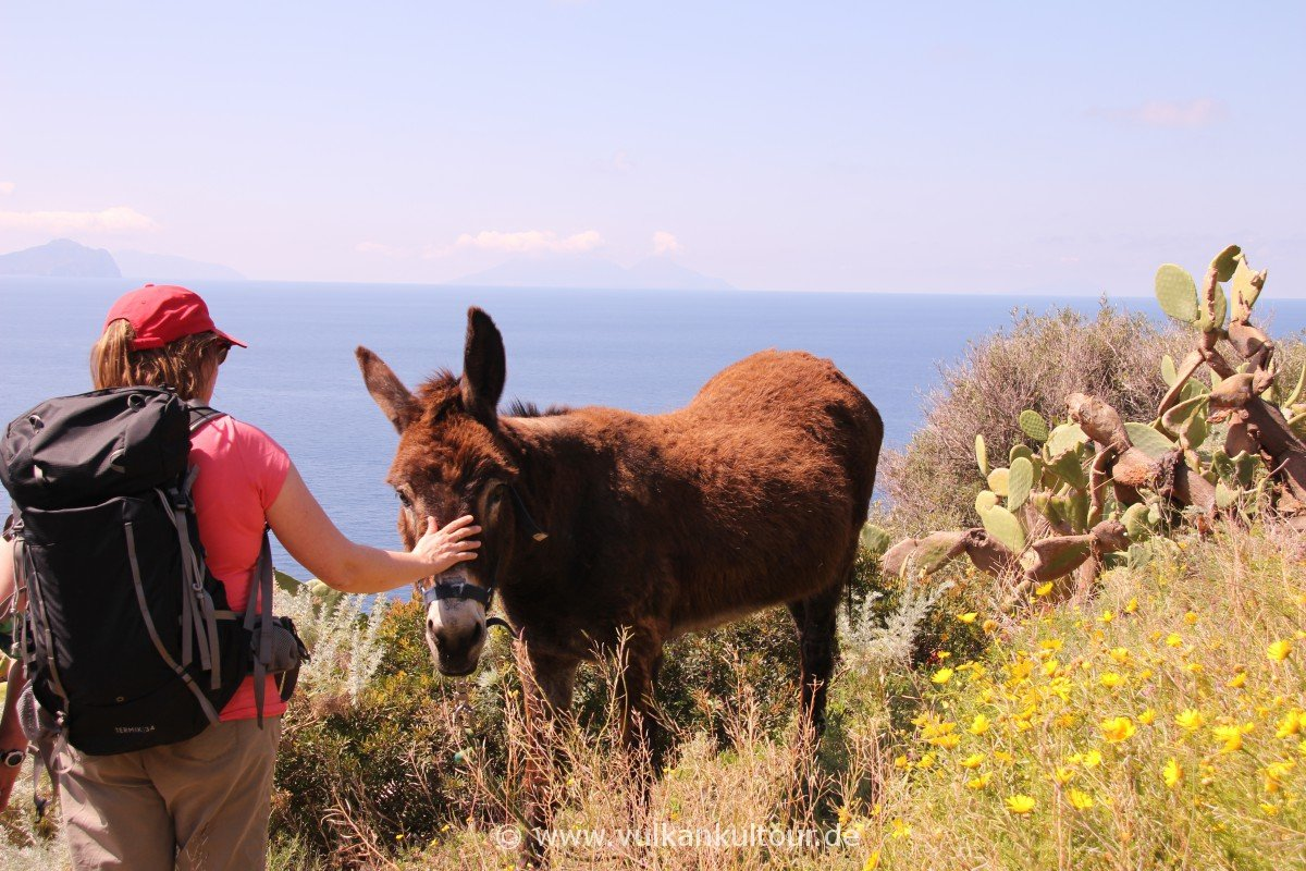 Stromboli - Ausflug nach Ginostra und seinen bevorzugten Transportmitteln