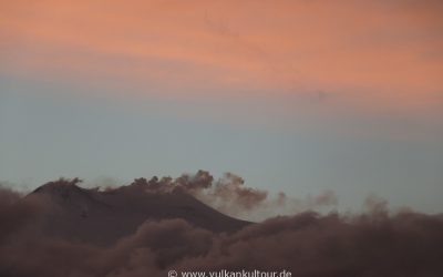 Am Morgen des 24.1.2017 - erste Anzeichen für beginnende Aktivität (Foto © Flo Pachaly)